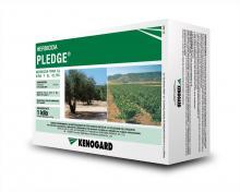 Caja Pledge