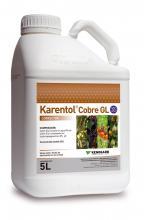 Karentol Cobre GL 5 L