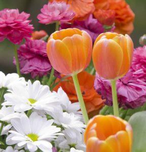 bodegon_flors