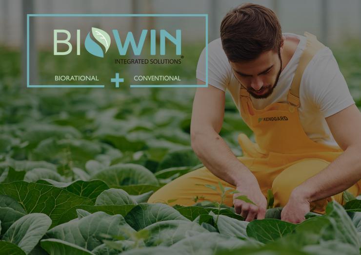 Webinars Sobre La Estrategia BioWin®